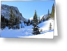 Winter Wonders Greeting Card