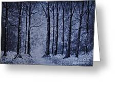 Winter Woods Eve Greeting Card