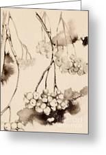 Winterberries Greeting Card
