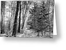 Winteress Greeting Card