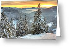 Winterlands Greeting Card