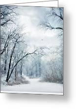 Winter's Cloak Greeting Card