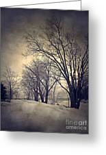 Winter's Dark Thoughts Greeting Card