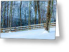 Winters Day - Pisgah Forest Nc Greeting Card