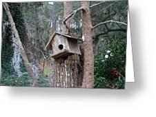 Winter's Empty Nest Greeting Card