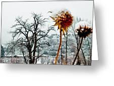 Winters Field Greeting Card