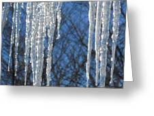 Winter's Icy Fingers Greeting Card