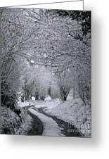 Winters Lane Greeting Card