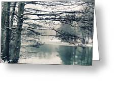Winter's Reach Greeting Card