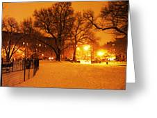 Winter's Solace Greeting Card