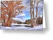 Winters Window Greeting Card