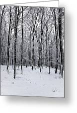 Wintertime Greeting Card