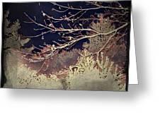 Wintervwoods Greeting Card