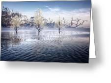 Wintery Coast Greeting Card