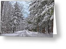 Wintery Country Road Greeting Card