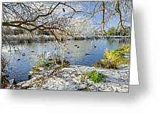Wintry River At Newton Road Park Greeting Card