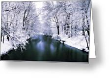 Wintry White Greeting Card