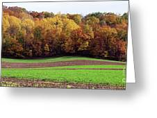 Wisconsin Colors Greeting Card
