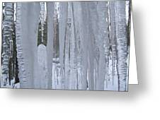 Wisconsin Icicles Greeting Card
