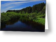 Wisconsin River In Vilas County Greeting Card