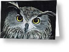 Wise Eyes II Greeting Card