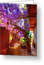 Wisteria Canopy In Bisbee Arizona Greeting Card