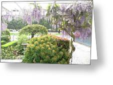 Wisteria In Hailstorm Greeting Card