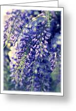 Wisteria Whimsy Greeting Card
