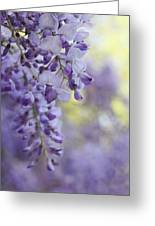 Wisteria's Soft Floral Whispers Greeting Card