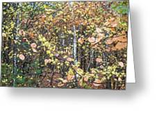 Witch Hazel Forest Greeting Card