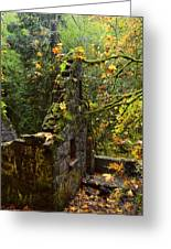 Witches Castle Greeting Card