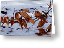 With Autumn's Passing Greeting Card