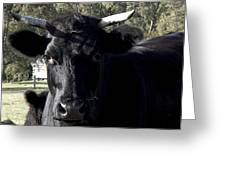 With Love - Bull Friend Greeting Card