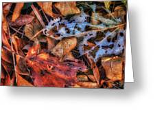 Withered Autumn Greeting Card