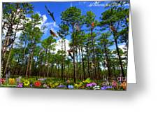 Withlacoochee State Forest Nature Collage Greeting Card