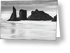 Wizard's Hat Sea Stack - Black And White Greeting Card