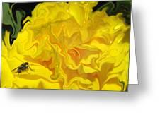 Wohlfahrtia And Begonia Greeting Card