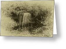 Wolcott Falls Greeting Card by William Norton