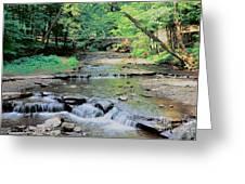 Wolf Creek Greeting Card