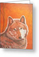 Wolf Home Burning Greeting Card
