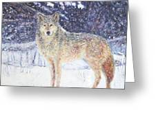 Wolf Of The North Greeting Card