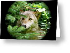 Wolf Thick Of The Woods Greeting Card