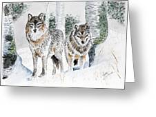 Wolves In The Birch Trees  Greeting Card