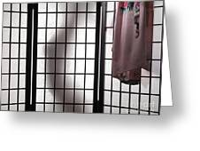 Woman Behind Shoji Screen Greeting Card