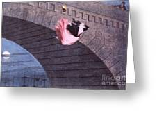 Woman Committing Suicide By Jumping Off Of A Bridge Greeting Card