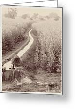 Woman Doing Laundry In Canal- Sepia Greeting Card