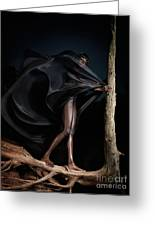 Woman In Black Flying Outfit Greeting Card