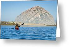 Woman Kayaking In Morro Bay Greeting Card by Bill Brennan - Printscapes