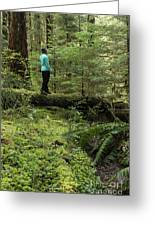 Woman On A Moss Covered Log In Olympic National Park Greeting Card