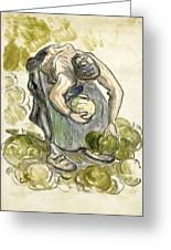 Woman Picking Cabbage Greeting Card